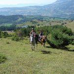 le Champsaur à cheval