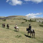 randonnée à cheval hautes alpes
