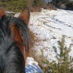 Le Buëch sous la neige