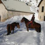Matacharre dans la neige