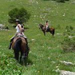 à cheval dans les hautes-alpes