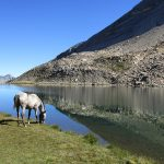 Queyras lac