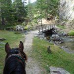 la clarée à cheval